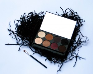 Review of the Motives Mavens Element Eye Palette